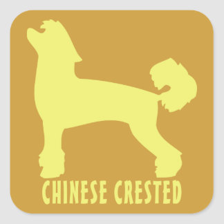 Chinese Crested Square Sticker