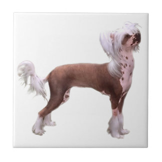 Chinese Crested Tile