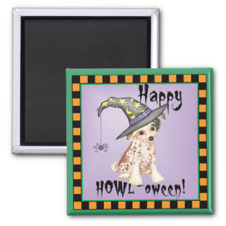 Chinese Crested Witch Square Magnet