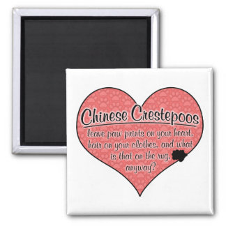 Chinese Crestepoo Paw Prints Dog Humor Square Magnet