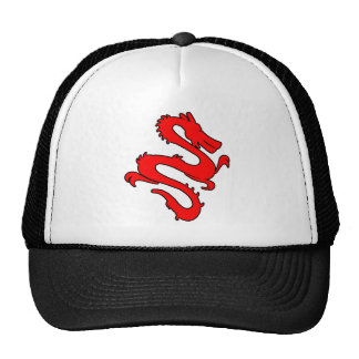 Chinese Enter The Dragon Kung Fu Symbol Mesh Hat