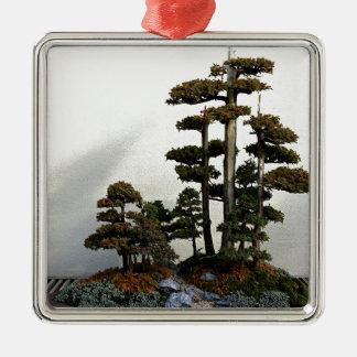 Chinese Juniper Bonsai Trees Silver-Colored Square Decoration