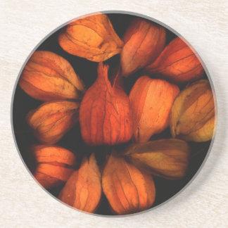Chinese Lantern (Physalis)Fruit Coaster