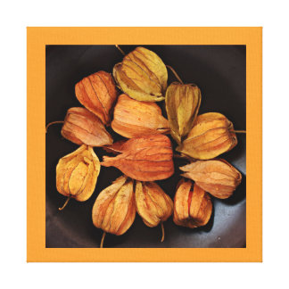 Chinese Lantern (Physalis) Fruits Wrapped Canvas