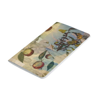 Chinese Lantern Surrounded Journal