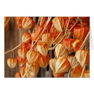 Chinese Lanterns Card