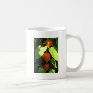 Chinese Lanterns Coffee Mugs