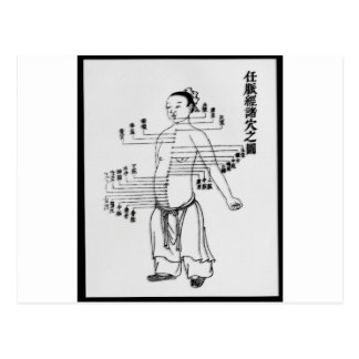 Chinese Medicine chart Postcards