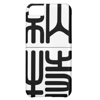 Chinese name for Nat 20741_0.pdf iPhone 5C Case