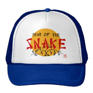 Chinese New Year of The Snake Hats