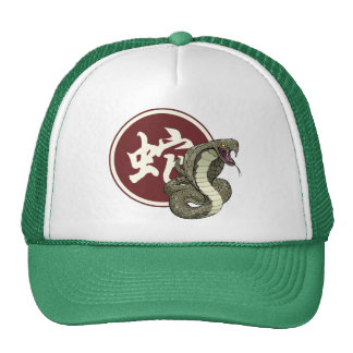 Chinese New Year of the Snake Hat