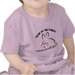 Chinese New Year Rabbit T-Shirt