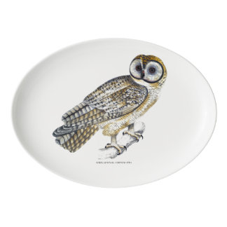Chinese Owl Plate Porcelain Serving Platter