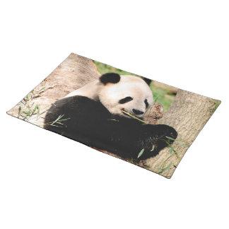 Chinese Panda Placemats