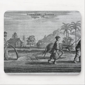 Chinese Peasants, a General Description from an ac Mouse Mat