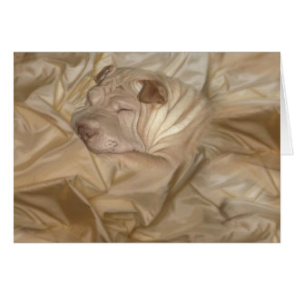 Chinese Shar Pei Camouflaged in Wrinkles Greeting Card