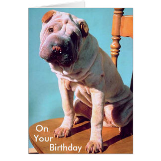 Chinese Shar-Pei Card