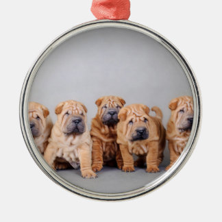 Chinese Shar pei puppies Christmas Ornament