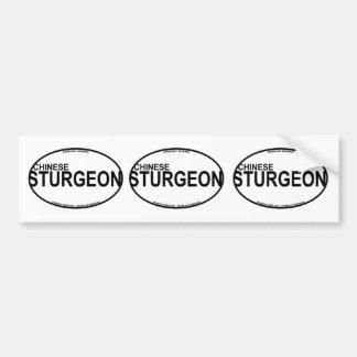 Chinese Sturgeon Euro Stickers