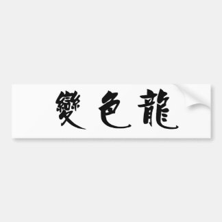 Chinese Symbol for anole, chameleon Bumper Sticker