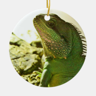 Chinese Water Dragon Christmas Ornament
