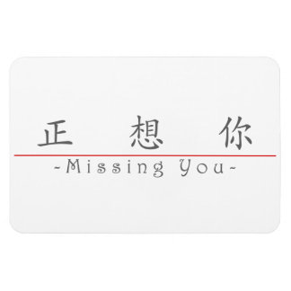 Chinese word for Missing You 10295_1.pdf Rectangular Magnets