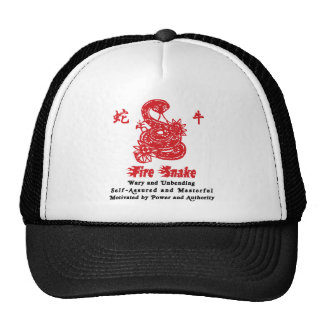 Chinese Year of The Fire Snake 1977 Hats