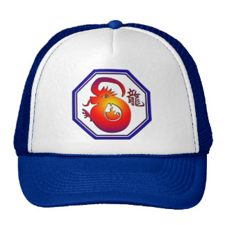 Chinese Zodiac Dragon Sign Gift Cap