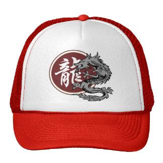 Chinese Zodiac Sign Dragon Hat