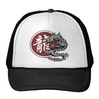 Chinese Zodiac Sign Dragon Mesh Hat