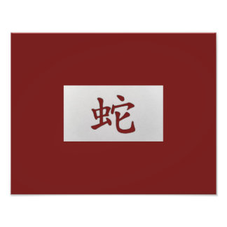 Chinese zodiac sign Snake red Photograph
