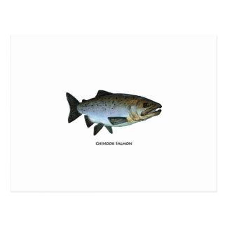 Chinook - King Salmon Postcard