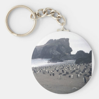 Chinstrap Penguins on Seal Island Basic Round Button Key Ring