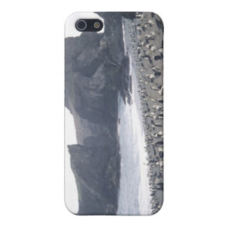 Chinstrap Penguins on Seal Island iPhone 5 Case