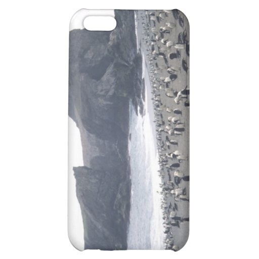 Chinstrap Penguins on Seal Island iPhone 5C Cases