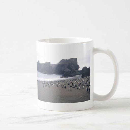 Chinstrap Penguins on Seal Island Mug
