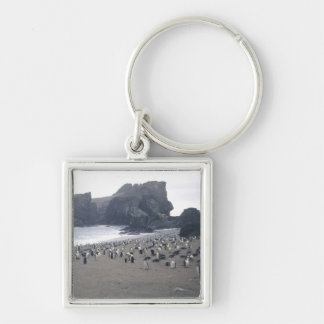 Chinstrap Penguins on Seal Island Silver-Colored Square Key Ring