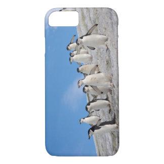 chinstrap penguins, Pygoscelis antarctica, iPhone 8/7 Case