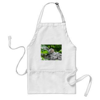 chipmunk 1 apron