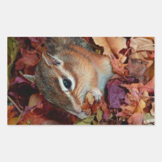 Chipmunk , Autumn (10) photo Rectangular Sticker