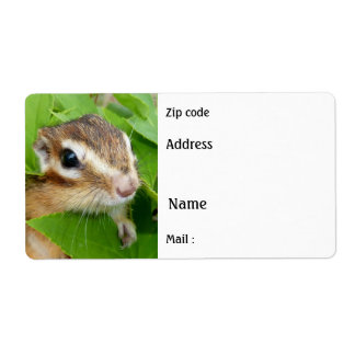 Chipmunk , Avery Label Shipping Label