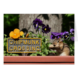 Chipmunk Crossing - Cute with Peanut and Pansies Greeting Card