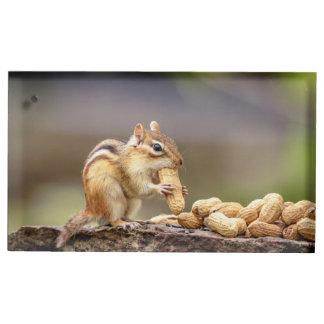 Chipmunk eating a peanut table card holder