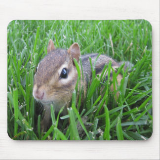 Chipmunk In The Grass Mouse Mat
