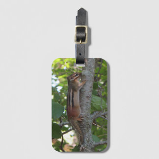 Chipmunk in the Woods Luggage Tag