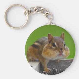 chipmunk basic round button key ring