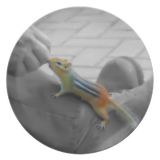 Chipmunk Lunch Party Plate
