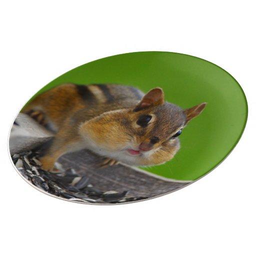chipmunk porcelain plate