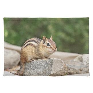 Chipmunk on a rock place mat