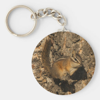 Chipmunk perched basic round button key ring